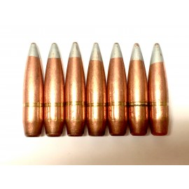 50 Cal 647gr API Silver Tip - 50ct