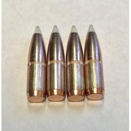 270 130gr Nosler AccuBond White Ballistic Tip - 100ct