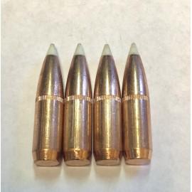 308 180gr Nosler AccuBond White Ballistic Tip - 100ct