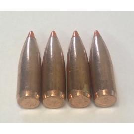 223 60gr Nosler Orange Ballistic Tip - 500ct