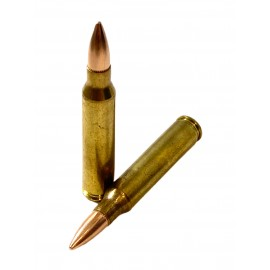 AM .223 Rem 55gr FMJ Free Shipping - 1000 rds
